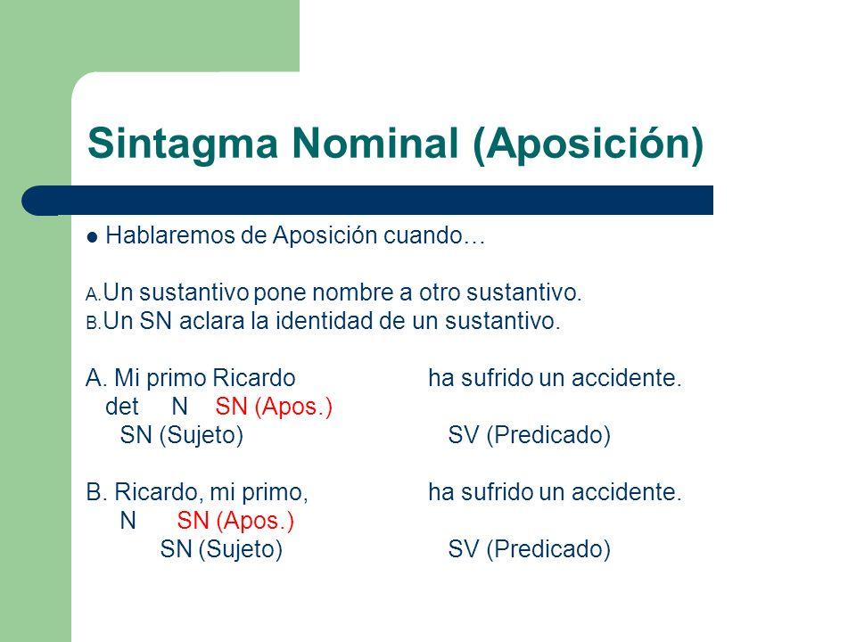Sintagma Nominal (Aposición) Hablaremos de Aposición cuando… A. Un sustantivo pone nombre a otro sustantivo. B. Un SN aclara la identidad de un sustan