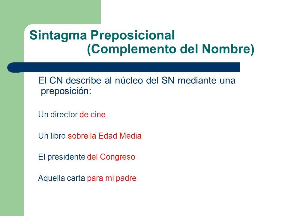 Sintagma Preposicional (Complemento del Nombre) El CN describe al núcleo del SN mediante una preposición: Un director de cine Un libro sobre la Edad M