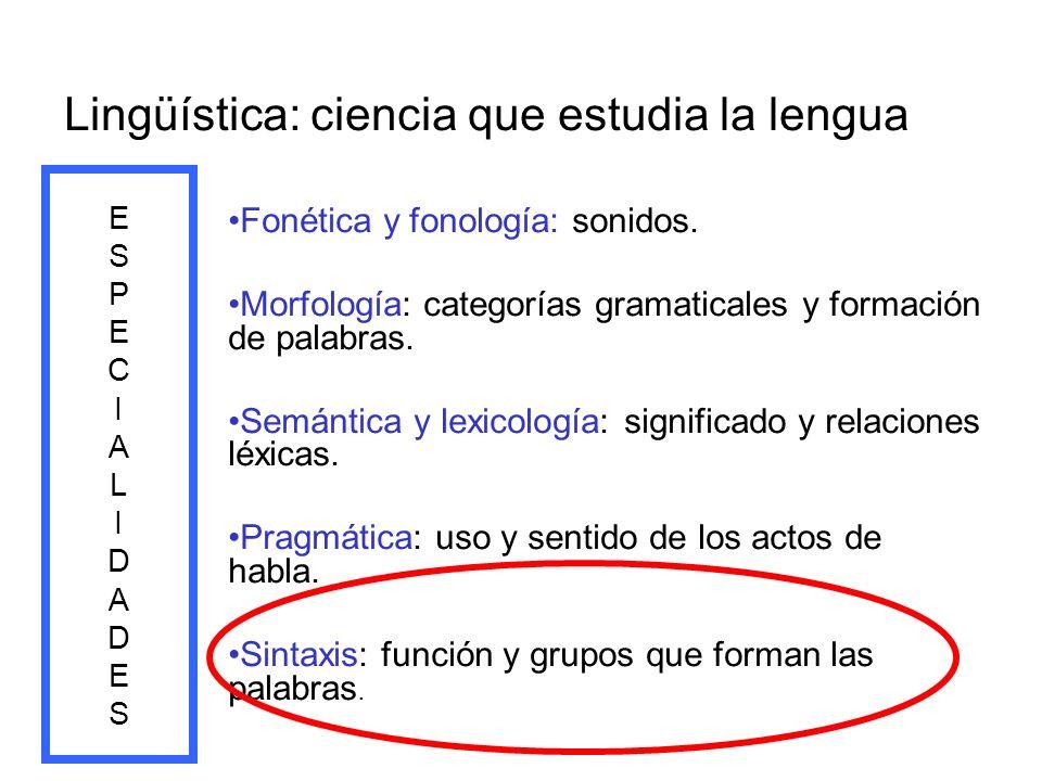 Lingüística: ciencia que estudia la lengua Fonética y fonología: sonidos. Morfología: categorías gramaticales y formación de palabras. Semántica y lex