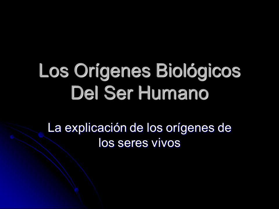 Los Orígenes Biológicos Del Ser Humano La explicación de los orígenes de los seres vivos