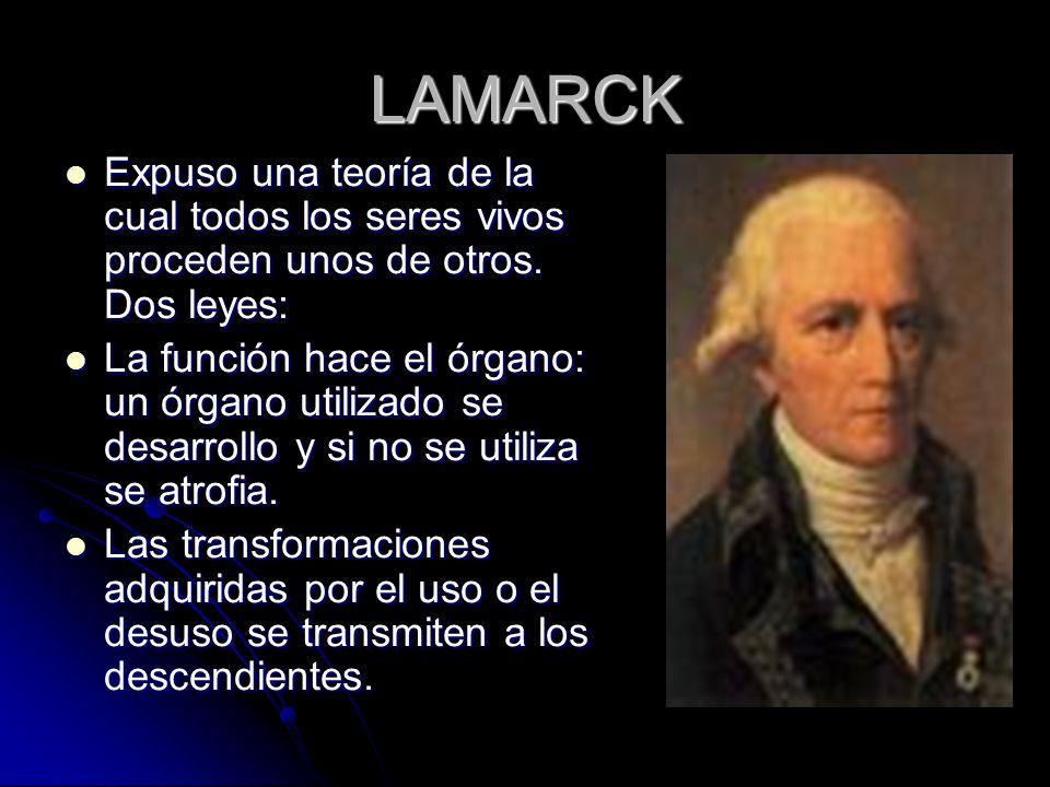 LAMARCK Expuso una teoría de la cual todos los seres vivos proceden unos de otros. Dos leyes: Expuso una teoría de la cual todos los seres vivos proce