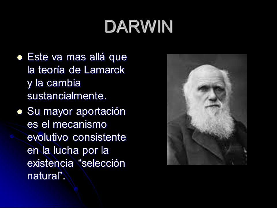 DARWIN Este va mas allá que la teoría de Lamarck y la cambia sustancialmente. Este va mas allá que la teoría de Lamarck y la cambia sustancialmente. S