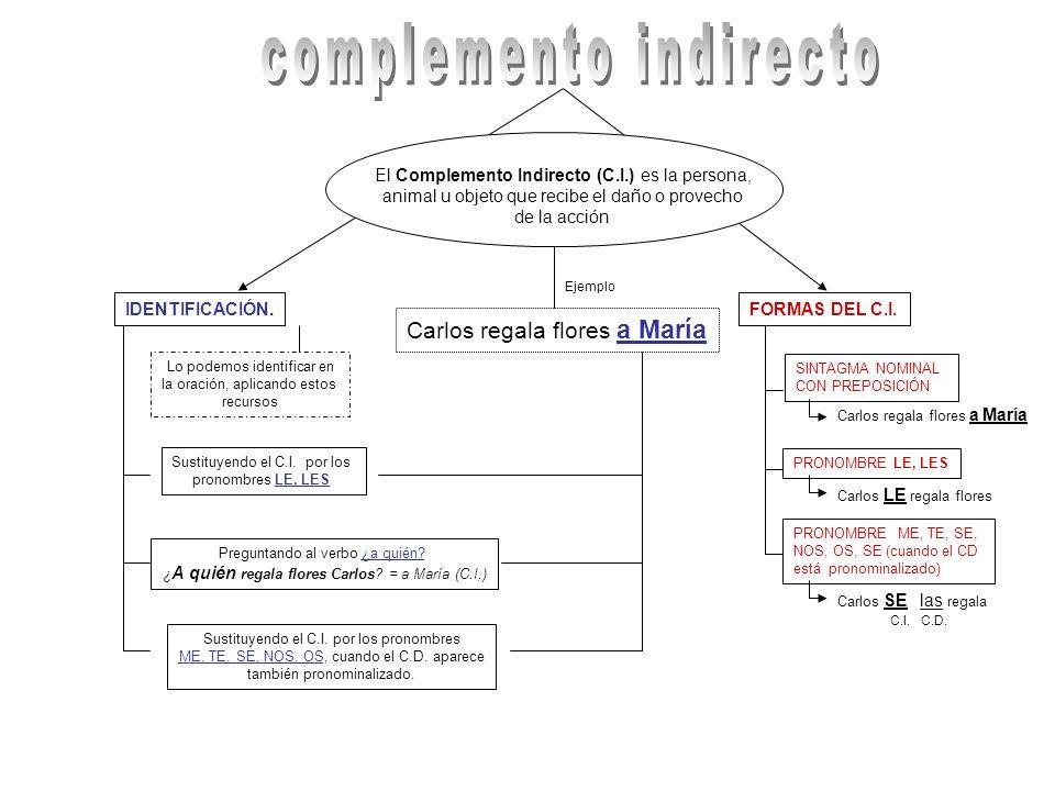 Los Complementos Circunstanciales (C.C.) expresan las diferentes circunstancias en que se realiza la acción del verbo.
