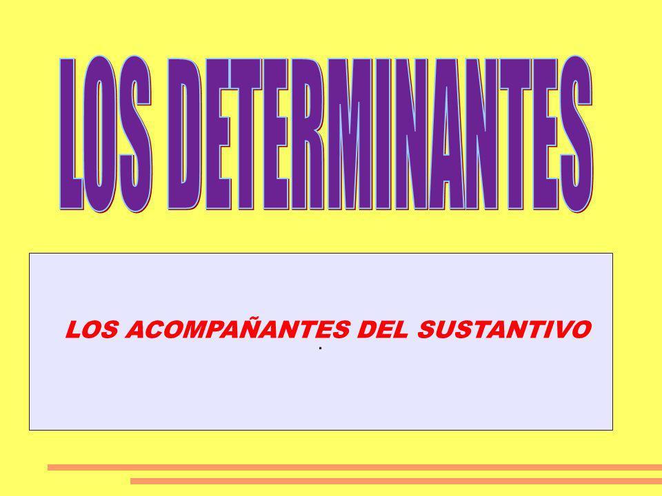 . LOS ACOMPAÑANTES DEL SUSTANTIVO