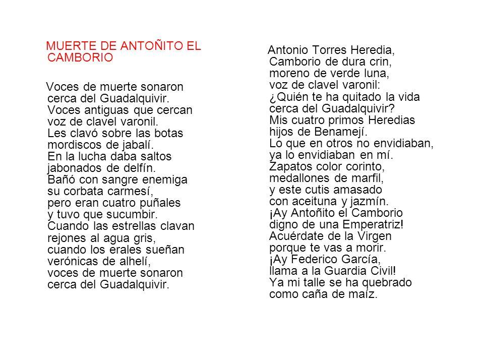 MUERTE DE ANTOÑITO EL CAMBORIO Voces de muerte sonaron cerca del Guadalquivir. Voces antiguas que cercan voz de clavel varonil. Les clavó sobre las bo