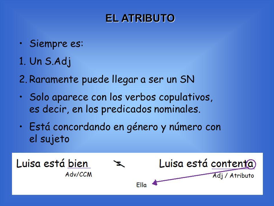 EL ATRIBUTO Siempre es: 1.Un S.Adj 2.Raramente puede llegar a ser un SN Solo aparece con los verbos copulativos, es decir, en los predicados nominales