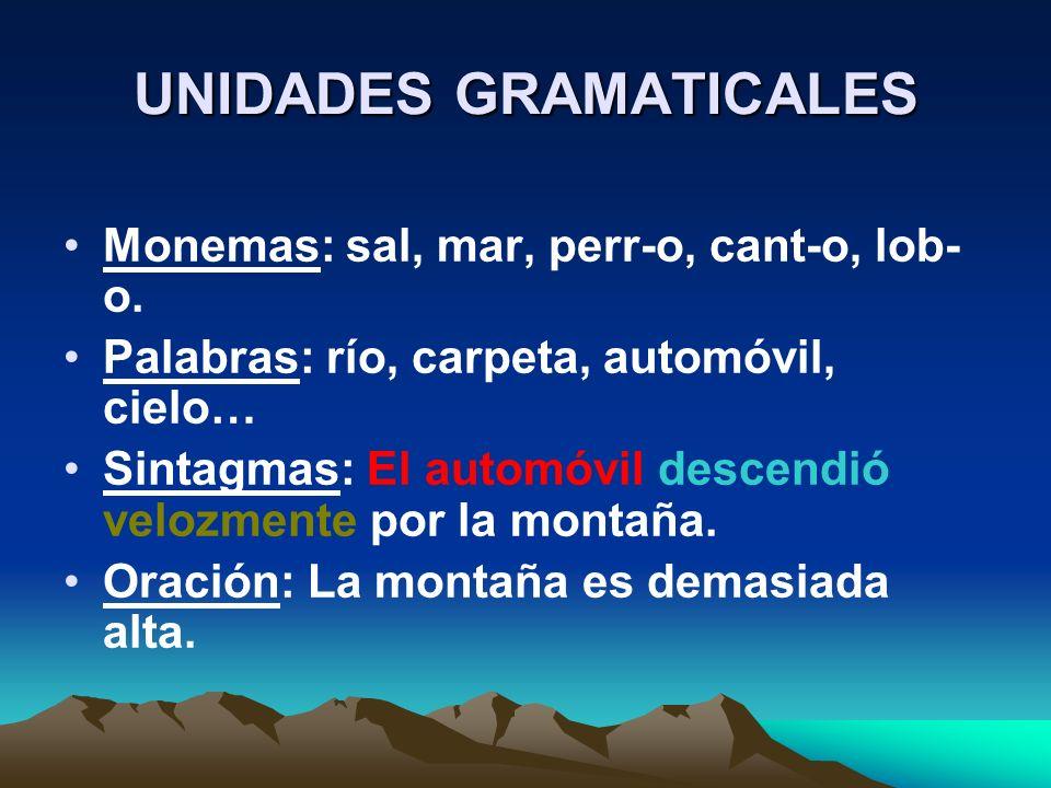 UNIDADES GRAMATICALES Monemas: sal, mar, perr-o, cant-o, lob- o. Palabras: río, carpeta, automóvil, cielo… Sintagmas: El automóvil descendió velozment
