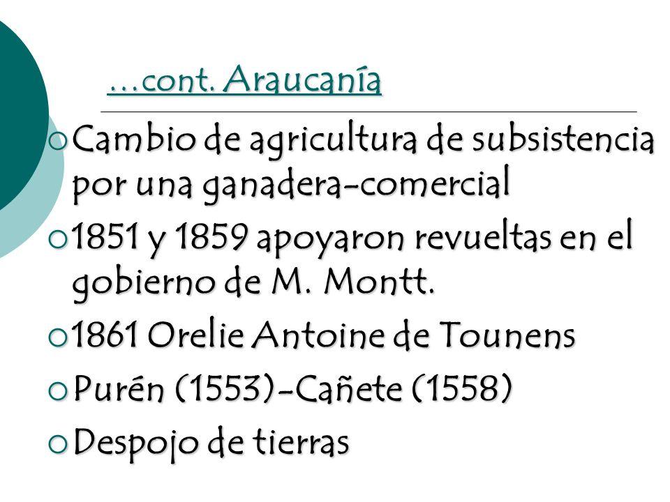 …cont. Araucanía Cambio de agricultura de subsistencia por una ganadera-comercial Cambio de agricultura de subsistencia por una ganadera-comercial 185