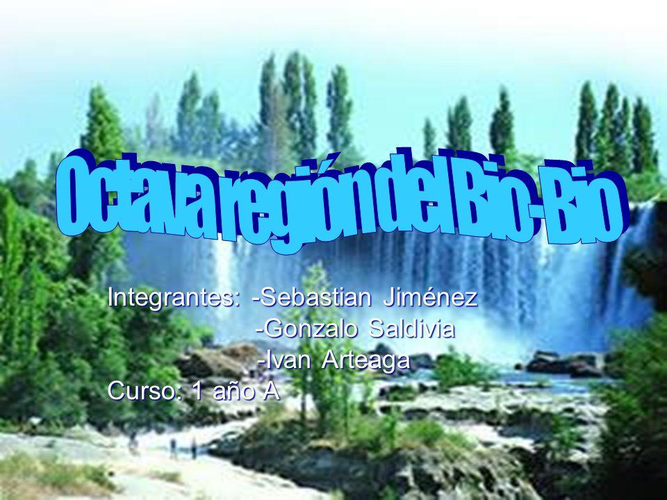 Integrantes: -Sebastian Jiménez -Gonzalo Saldivia -Gonzalo Saldivia -Ivan Arteaga Curso: 1 año A