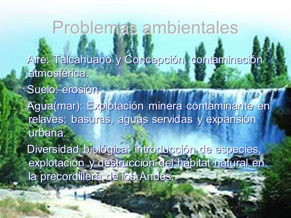 Problemas ambientales Aire: Talcahuano y Concepción, contaminación atmosférica. Aire: Talcahuano y Concepción, contaminación atmosférica. Suelo: erosi