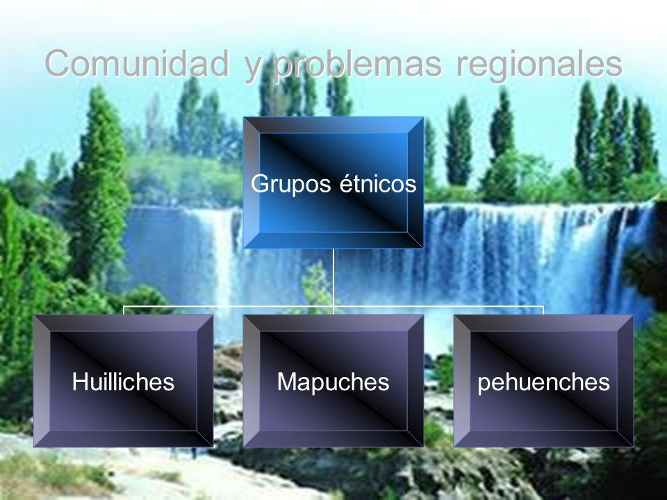 Comunidad y problemas regionales Grupos étnicos HuillichesMapuchespehuenches