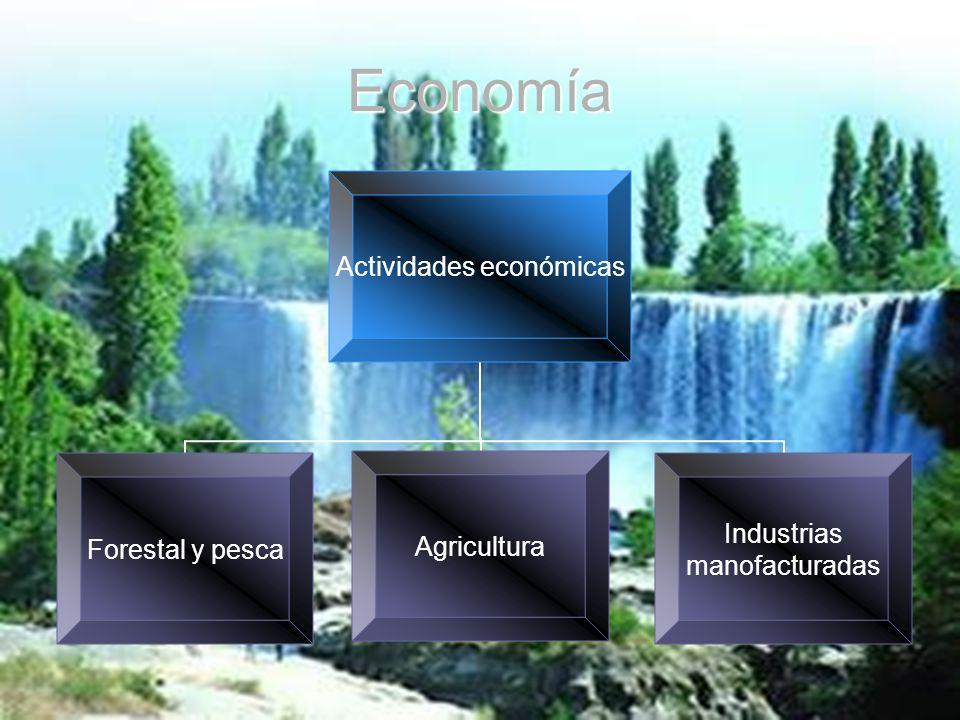 Economía Actividades económicas Forestal y pescaAgricultura Industrias manofacturadas