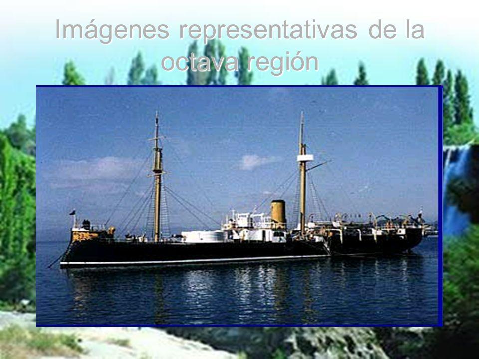 Imágenes representativas de la octava región