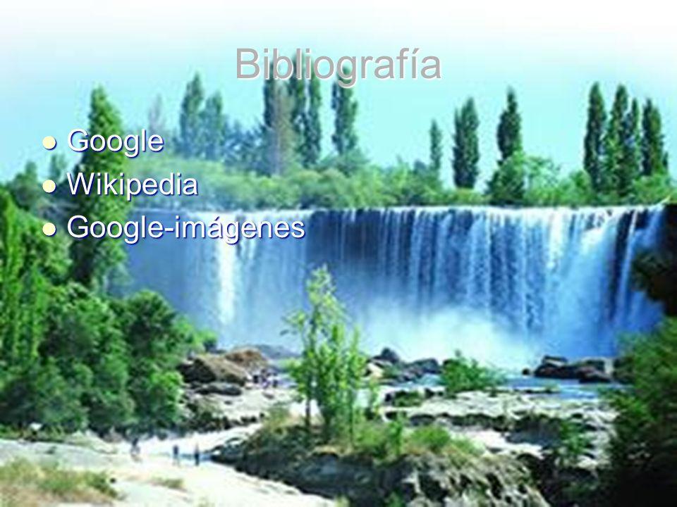 Bibliografía Google Google Wikipedia Wikipedia Google-imágenes Google-imágenes