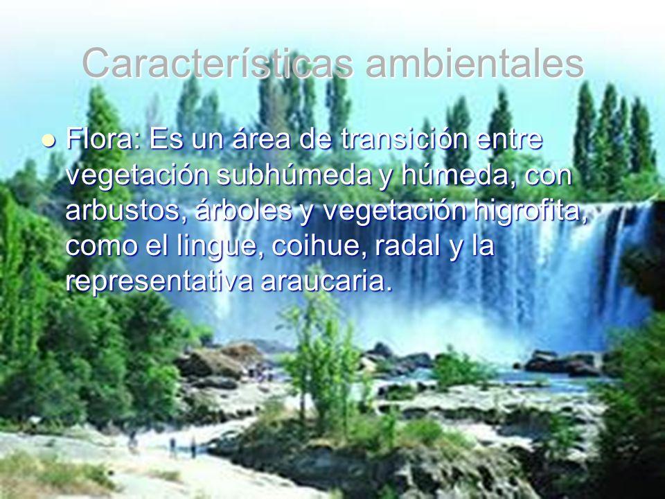 Características ambientales Flora: Es un área de transición entre vegetación subhúmeda y húmeda, con arbustos, árboles y vegetación higrofita, como el