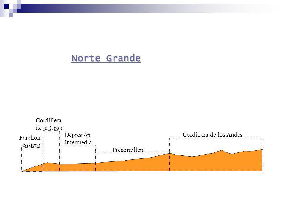 Farellón costero Cordillera de la Costa Cordillera de los Andes Depresión Intermedia Norte Grande Norte Grande Precordillera