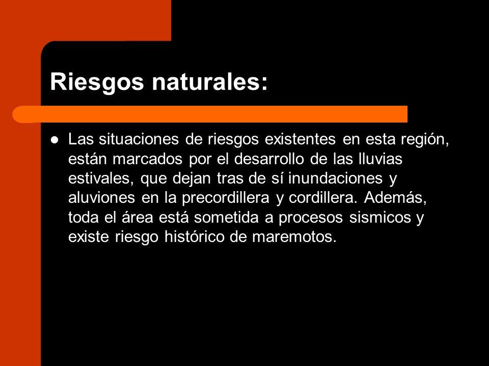 Riesgos naturales: Las situaciones de riesgos existentes en esta región, están marcados por el desarrollo de las lluvias estivales, que dejan tras de