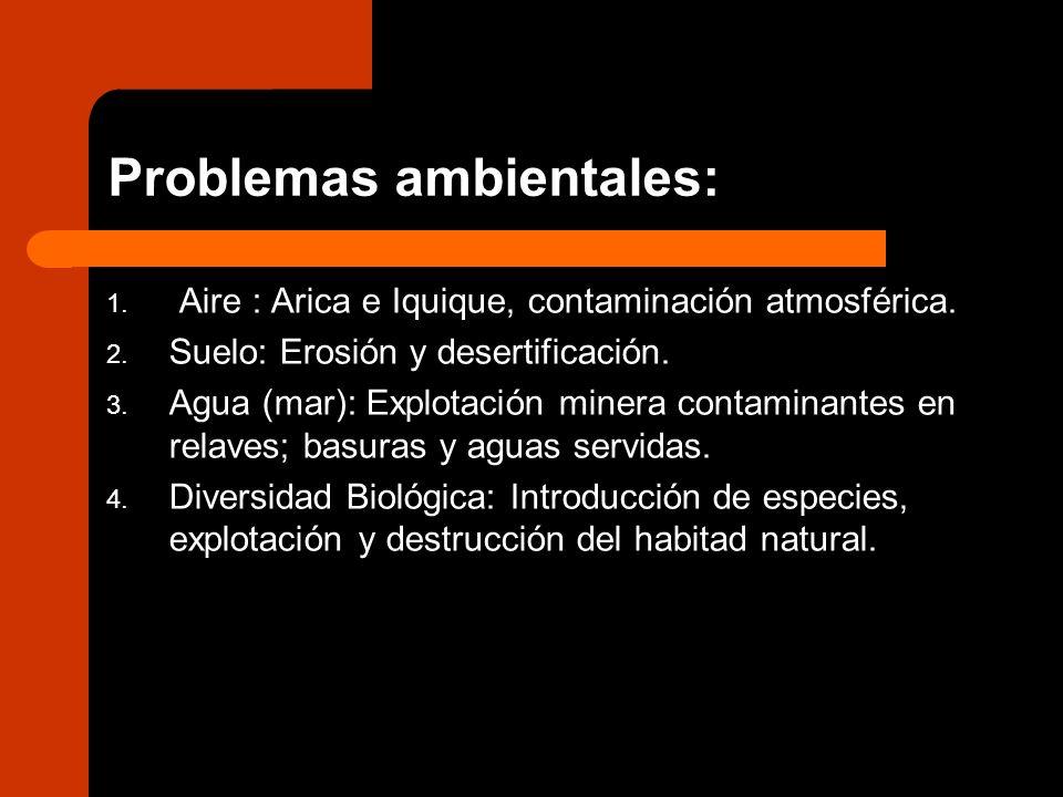 Problemas ambientales: 1. Aire : Arica e Iquique, contaminación atmosférica. 2. Suelo: Erosión y desertificación. 3. Agua (mar): Explotación minera co