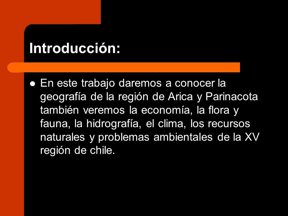 FLORA : Esta región posee vegetación de tipo xerófita (bajo requerimiento de agua) como los cactus y algunos árboles y arbustos, como el chañar y algarrobo.en la región de Arica y Parinacota, predomina la Queñoa.