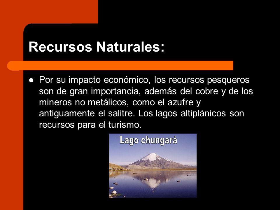 Recursos Naturales: Por su impacto económico, los recursos pesqueros son de gran importancia, además del cobre y de los mineros no metálicos, como el