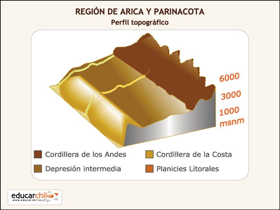 Orografía: En esta región, se presenta una meseta casi plana (altiplano) que se ubica entre el cordón occidental y oriental de la cordillera de los Andes, que supera en promedio los 4.000 metros de altura y se extiende por más de 1.000 Kilómetros hacía interior del continente.