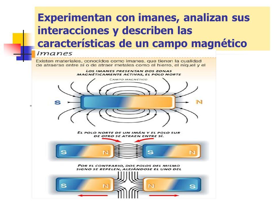 Experimentan con imanes, analizan sus interacciones y describen las características de un campo magnético