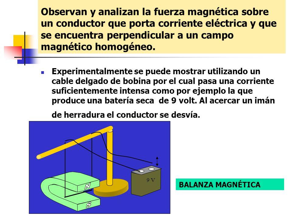 Observan y analizan la fuerza magnética sobre un conductor que porta corriente eléctrica y que se encuentra perpendicular a un campo magnético homogén