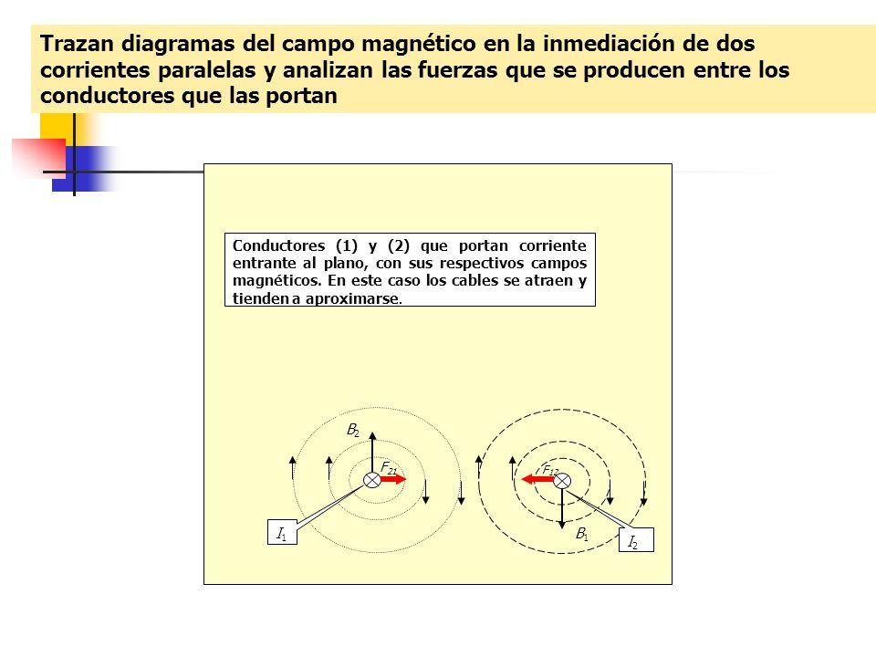 Trazan diagramas del campo magnético en la inmediación de dos corrientes paralelas y analizan las fuerzas que se producen entre los conductores que la