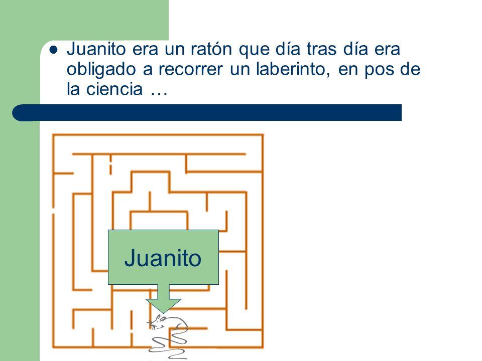 Juanito era un ratón que día tras día era obligado a recorrer un laberinto, en pos de la ciencia … Juanito