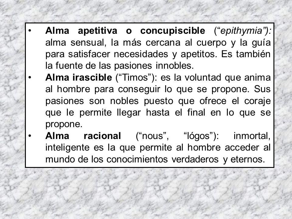 Alma apetitiva o concupiscible (epithymia): alma sensual, la más cercana al cuerpo y la guía para satisfacer necesidades y apetitos. Es también la fue