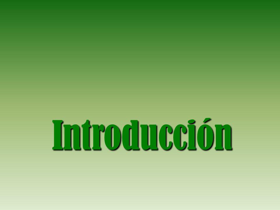 La Junta Central convoca una COMISIÓN DE CORTES (1809) con Jovellanos para valorar qué necesidades había de reformar en las diferentes instituciones del país.