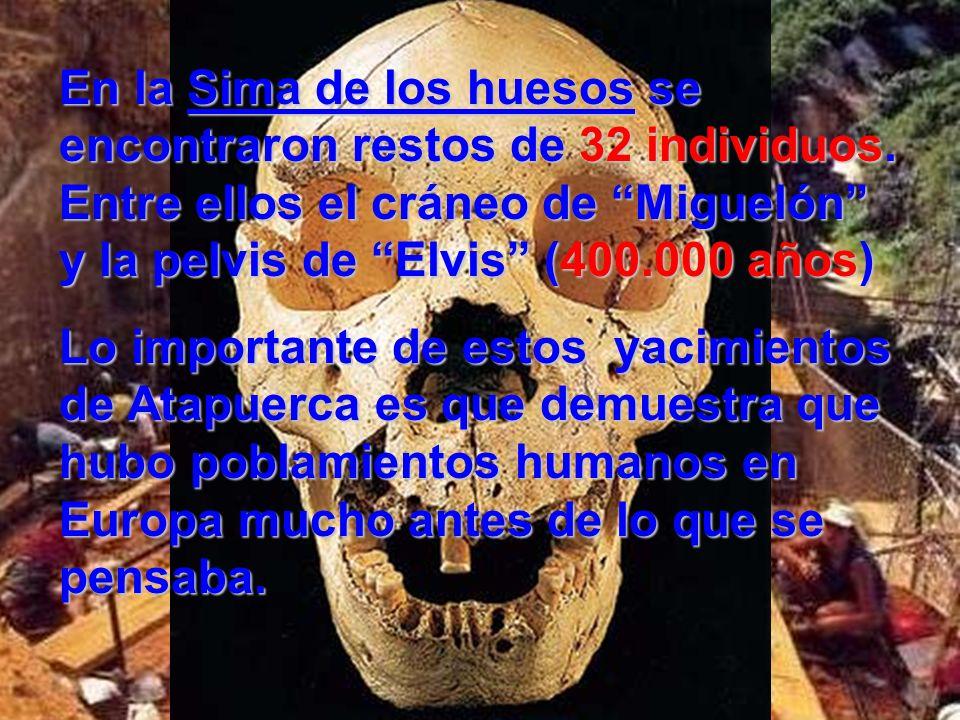 En la Sima de los huesos se encontraron restos de 32 individuos. Entre ellos el cráneo de Miguelón y la pelvis de Elvis (400.000 años) Lo importante d