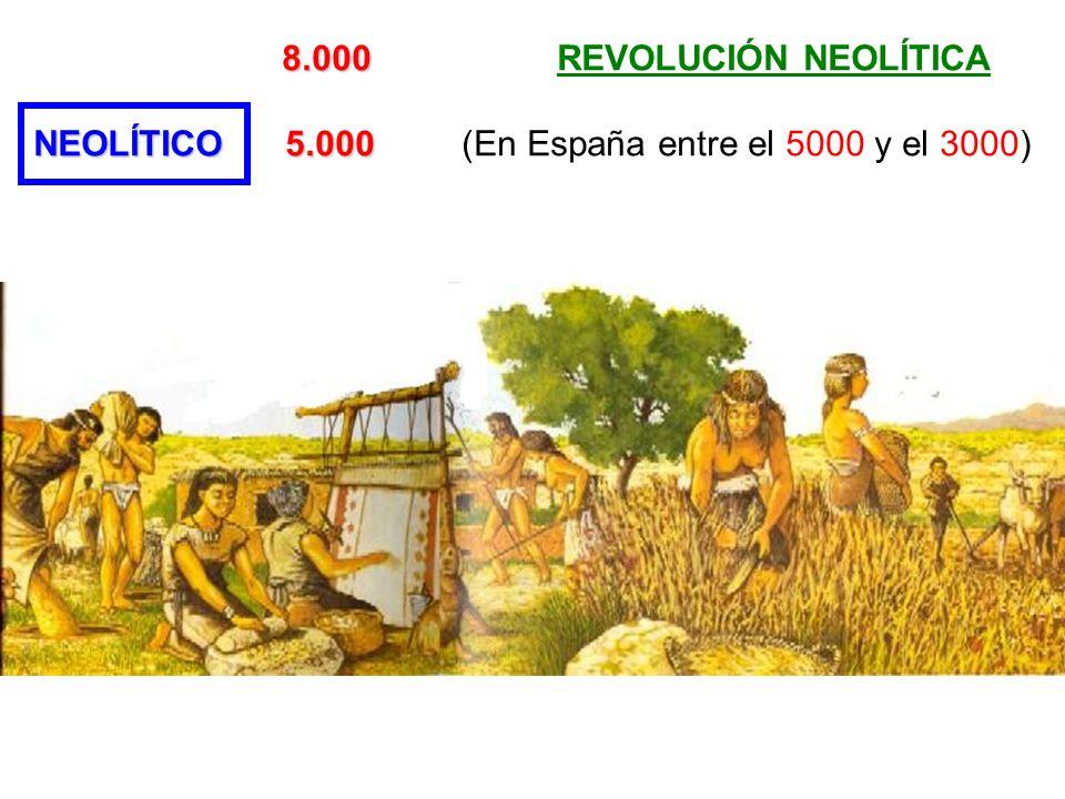 8.000 8.000 REVOLUCIÓN NEOLÍTICA NEOLÍTICO 5.000 NEOLÍTICO 5.000 (En España entre el 5000 y el 3000)