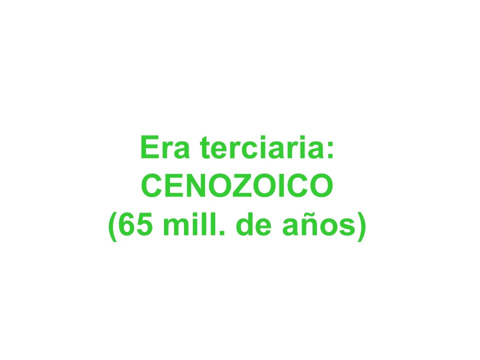GRIEGOS de Focea (600-560 a.C.):