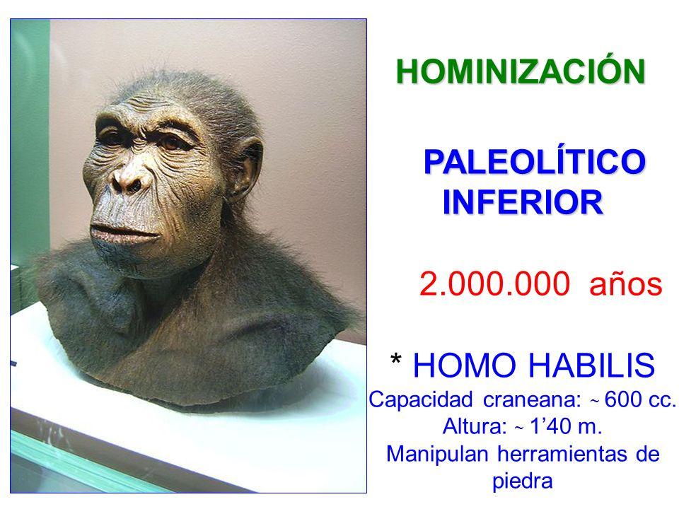 HISTORIA s.III * ROMANOS ROMANIZACIÓN s. II 218-206 a.C.