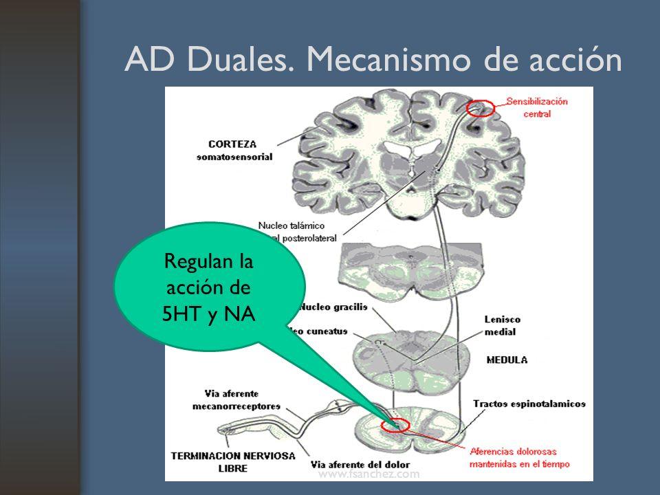 AD Duales. Mecanismo de acción Regulan la acción de 5HT y NA www.fsanchez.com