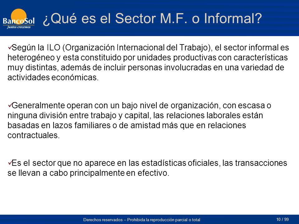 Derechos reservados – Prohibida la reproducción parcial o total 10 / 99 ¿Qué es el Sector M.F.