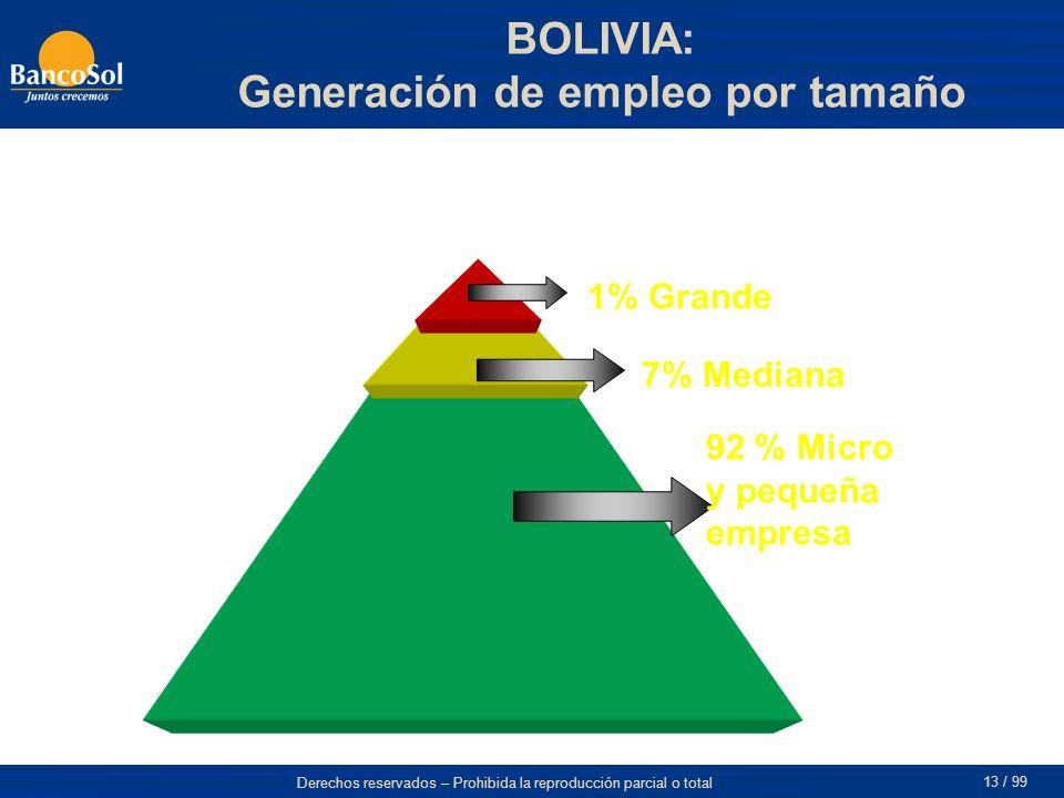 Derechos reservados – Prohibida la reproducción parcial o total 13 / 99 7% Mediana 1% Grande 92 % Micro y pequeña empresa BOLIVIA: Generación de empleo por tamaño