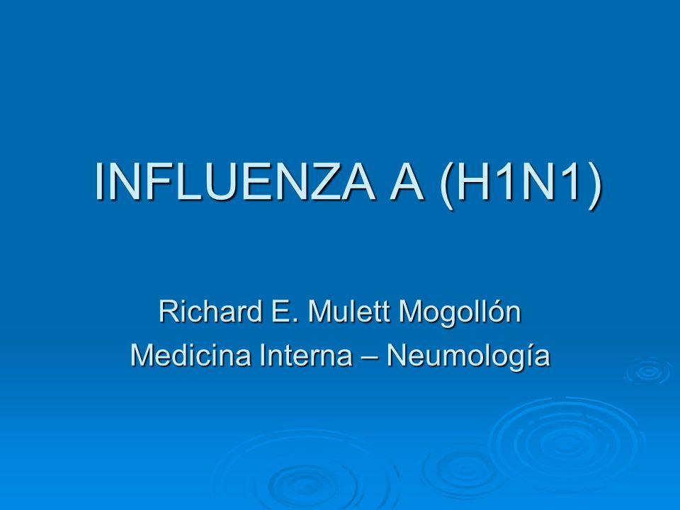 INFLUENZA A (H1N1) Richard E. Mulett Mogollón Medicina Interna – Neumología