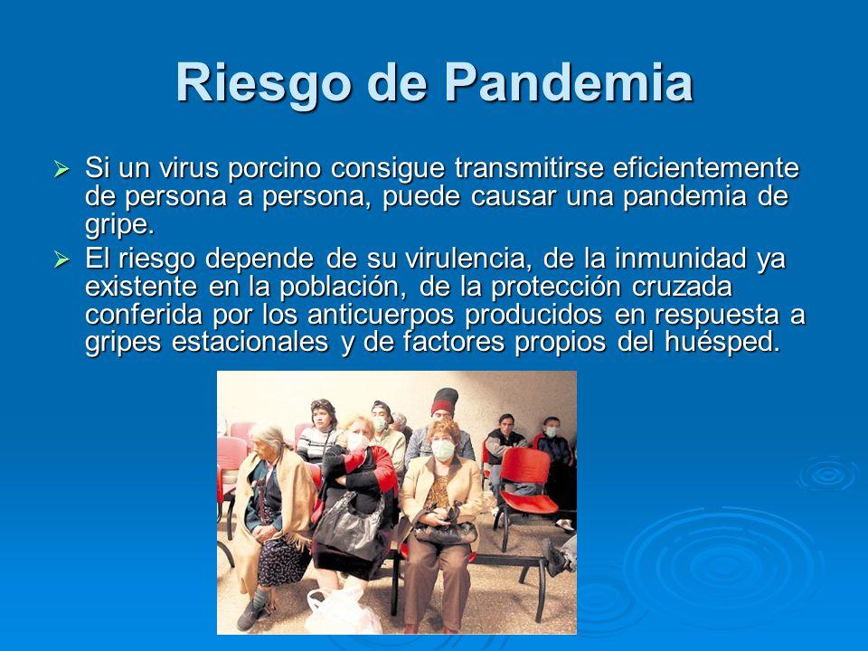 Riesgo de Pandemia Si un virus porcino consigue transmitirse eficientemente de persona a persona, puede causar una pandemia de gripe. Si un virus porc