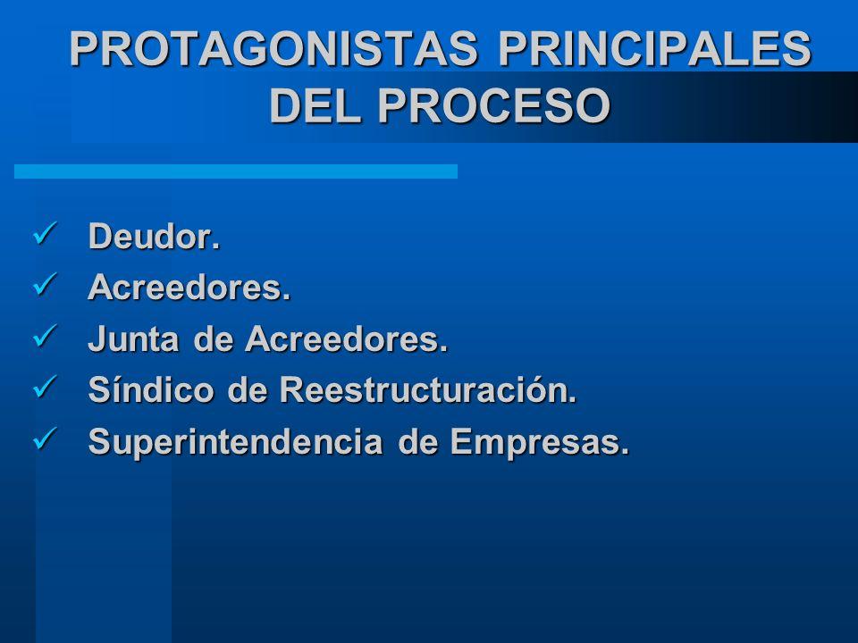 PROTAGONISTAS PRINCIPALES DEL PROCESO Deudor.Deudor.