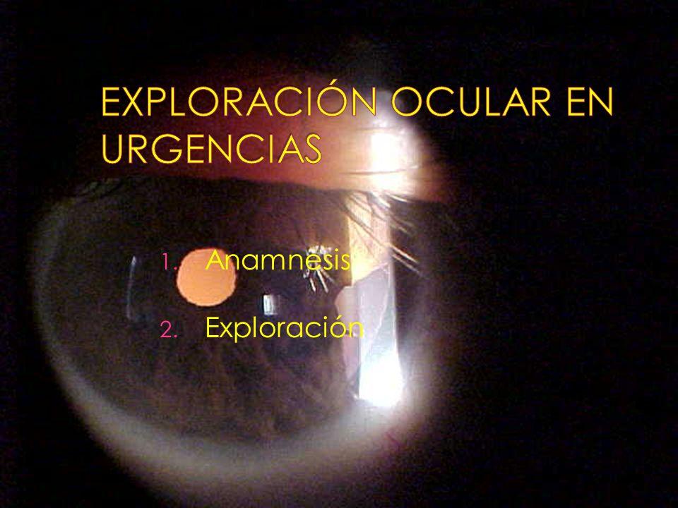 1. Anamnesis 2. Exploración