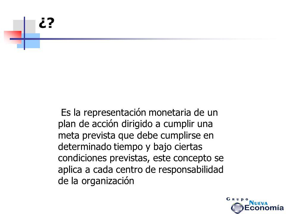 Al ser la representación monetaria del plan, permite el control financiero de la organización.