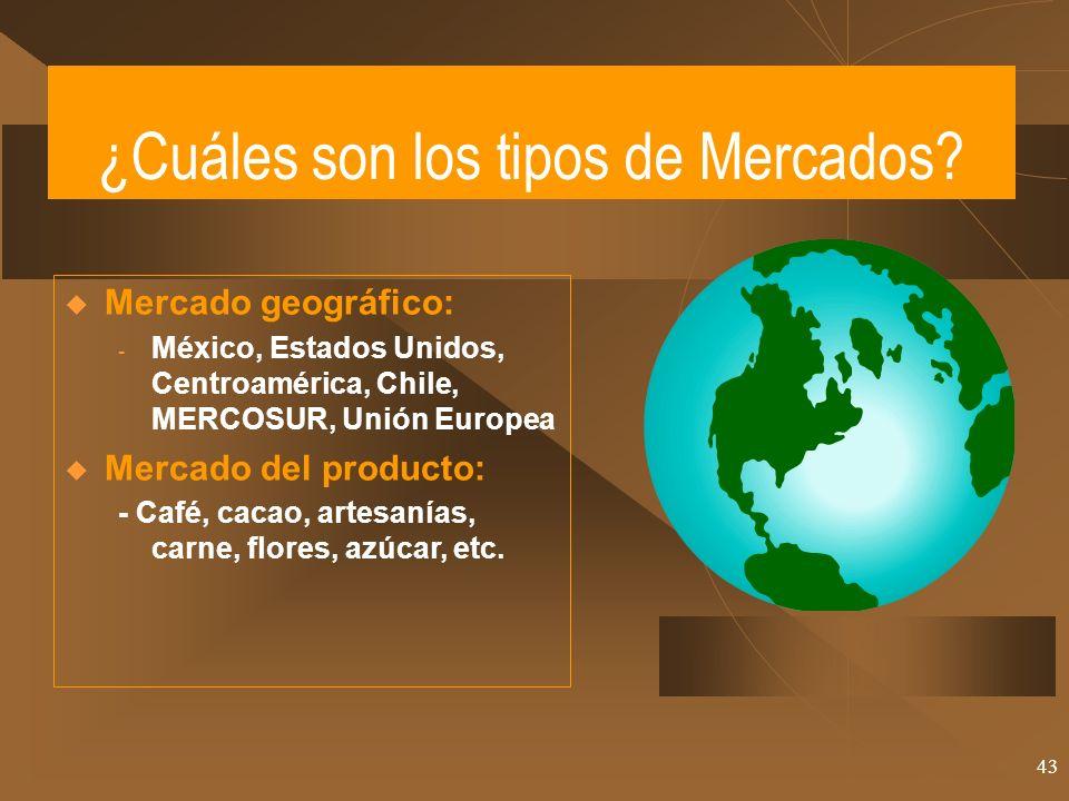 43 ¿Cuáles son los tipos de Mercados? Mercado geográfico: - México, Estados Unidos, Centroamérica, Chile, MERCOSUR, Unión Europea Mercado del producto
