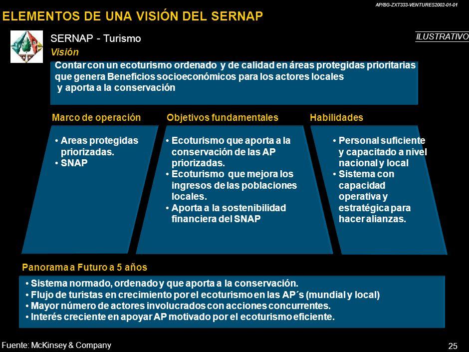 AP/BG-ZXT333-VENTURES2002-01-01 24 ELEMENTOS DE UNA VISIÓN EXCELENTE Visión Marco de operaciónObjetivos fundamentales Habilidades (V.competitivas) Pan