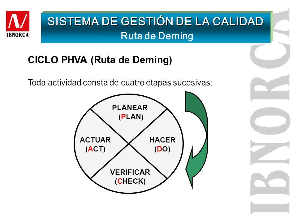 SISTEMA DE GESTIÓN DE LA CALIDAD Requisitos generales Realizar el seguimiento, medición y análisis de los procesos Asegurar disponibilidad de recursos