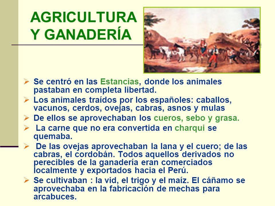 AGRICULTURA Y GANADERÍA Se centró en las Estancias, donde los animales pastaban en completa libertad. Los animales traídos por los españoles: caballos
