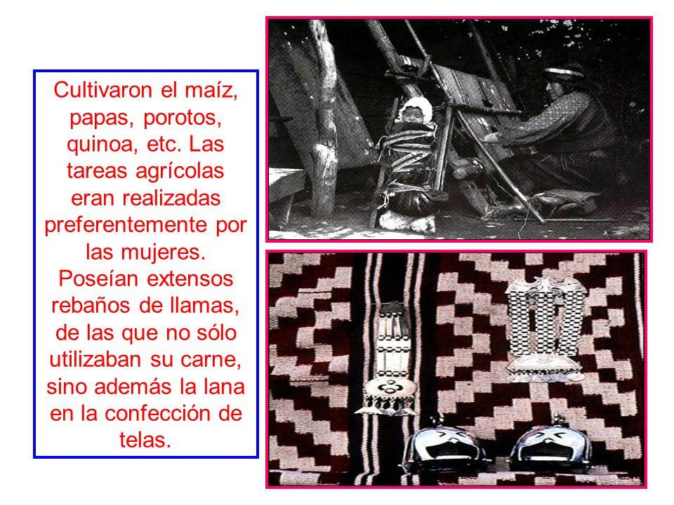 La sociedad araucana no contaba con una organización superior, permaneciendo en el nivel de los clanes, llamados levos o rehues, los cuales estaban co