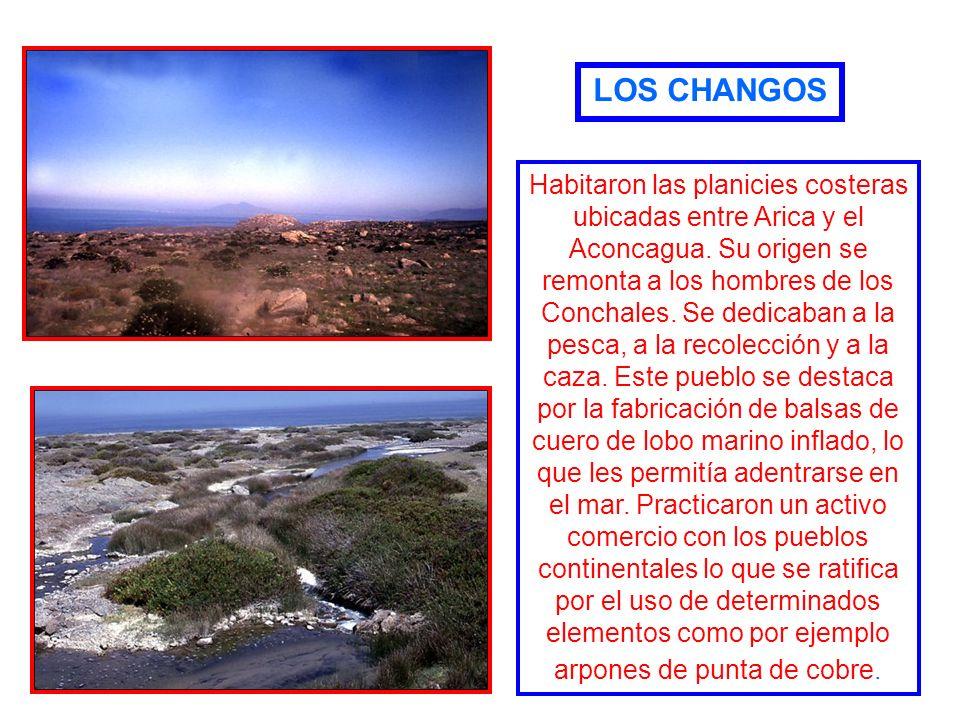 ZONA NORTE A.- NOMADE DEL MAR - LOS CHANGOS- LOS CHANGOS B.- SEDENTARIOS - AIMARAES- AIMARAES -ATACAMEÑOS-ATACAMEÑOS -DIAGUITAS-DIAGUITAS