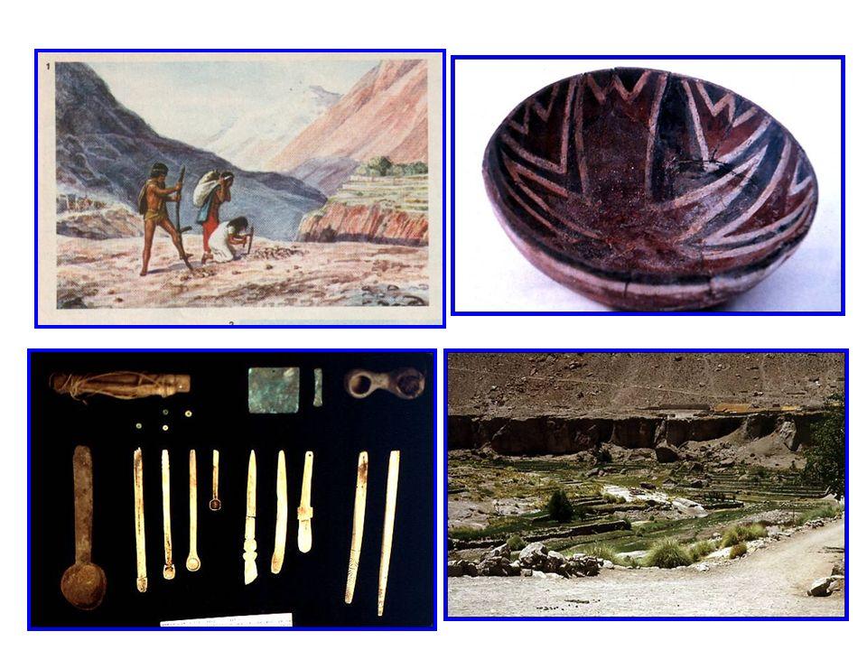 Geográficamente, se ubican entre el río Loa y el río Copiapó. Poseían su propia lengua llamada Kunza. La base social de esta cultura lo constituía el
